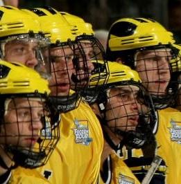 cost of hockey cage visor
